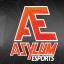 Asylum eSports Logo Case Study 9