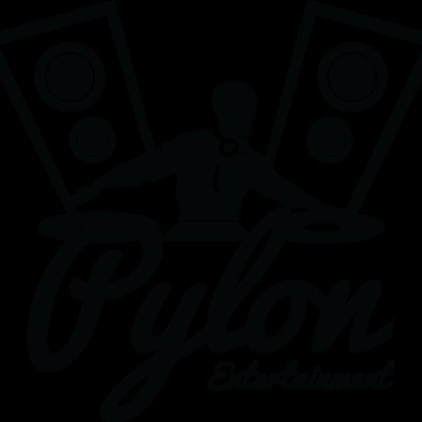 Pylon Entertainment Brand Case Study 8