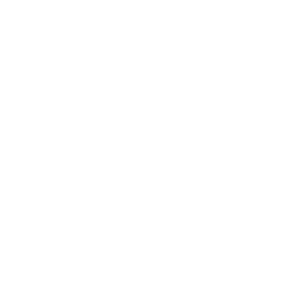 Pylon Entertainment Brand Case Study 9