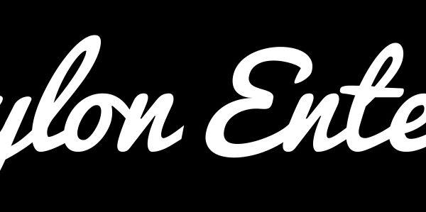 Pylon Entertainment Brand Case Study 12