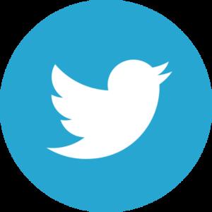 Twitter Icon (Circular)
