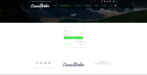 Web Design & Development Services 3