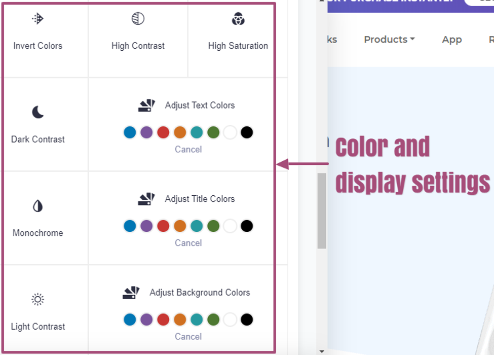 accessiBe color and display settings